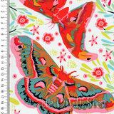 Hindsight | Vlinders Spring [AH146]_