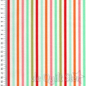 Essentially Yours | Stripe 3/16inch multi [8652-11]