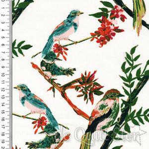 Bloomsburry Vogeltjes [54725]