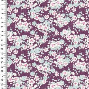 Woodland   Aster Violet [100286]