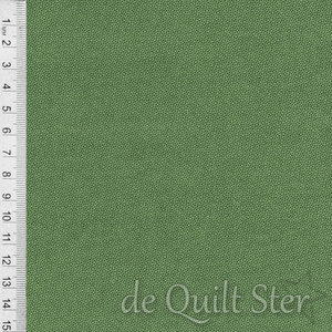 Dutch Heritage | Pindot Holly [1503]