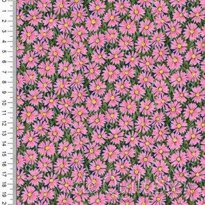 Roze Margrieten [2326P]