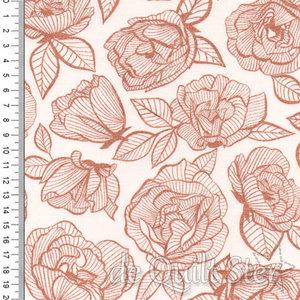 First Light | Roses  Rosé [5049-14M]